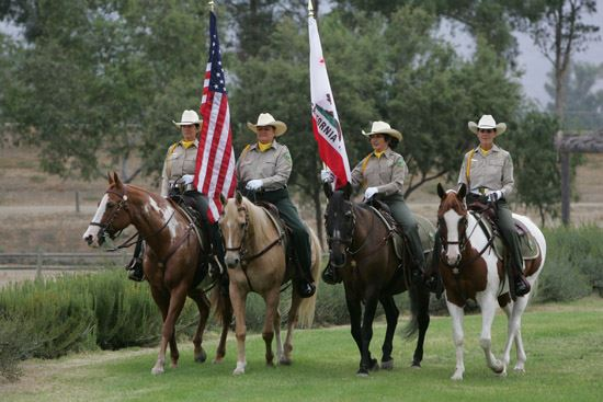 Valley Mounted Posse